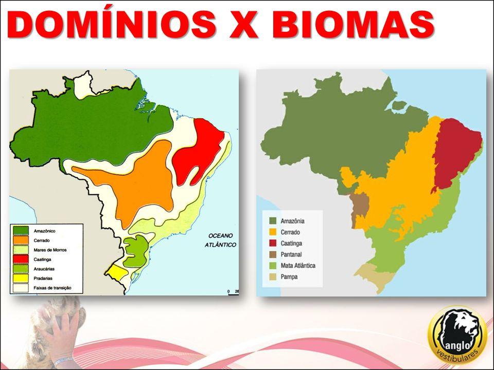 DOMÍNIOS X BIOMAS
