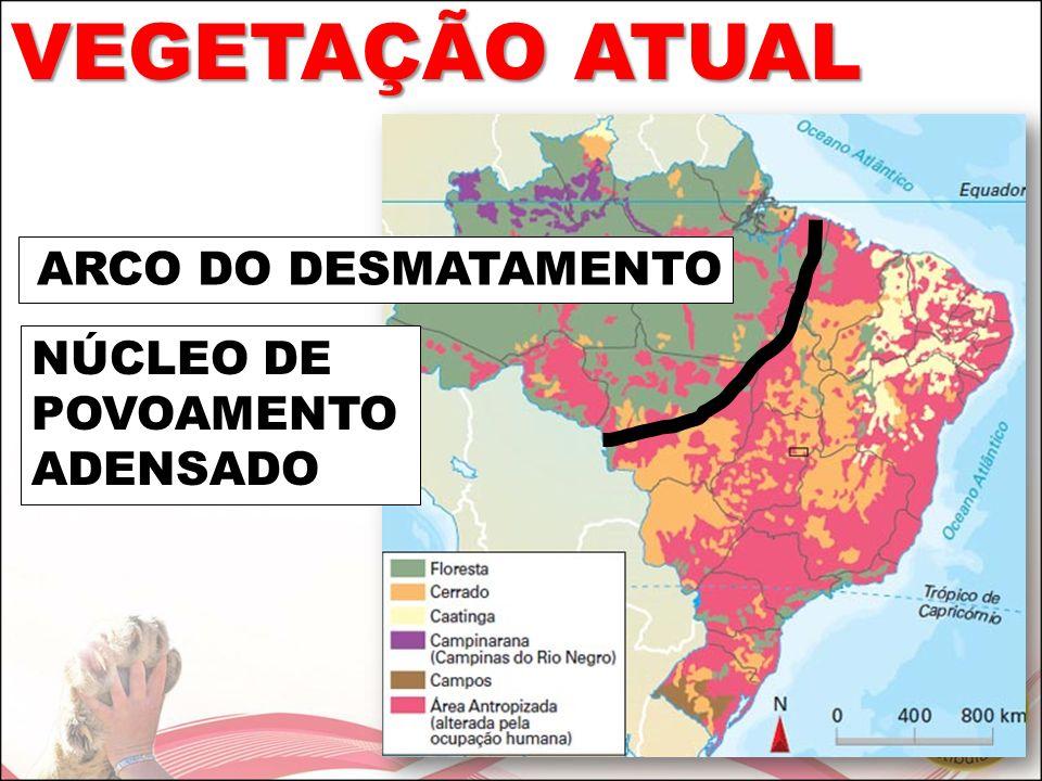 VEGETAÇÃO ATUAL ARCO DO DESMATAMENTO NÚCLEO DE POVOAMENTO ADENSADO
