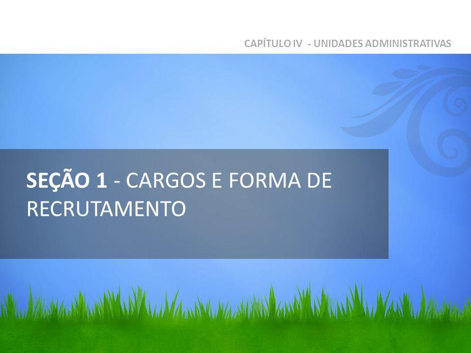 SEÇÃO 1 - CARGOS E FORMA DE RECRUTAMENTO