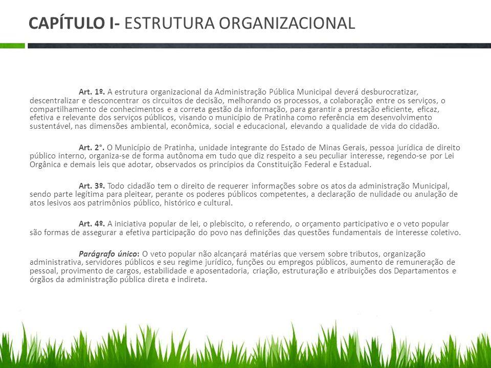 CAPÍTULO I- ESTRUTURA ORGANIZACIONAL