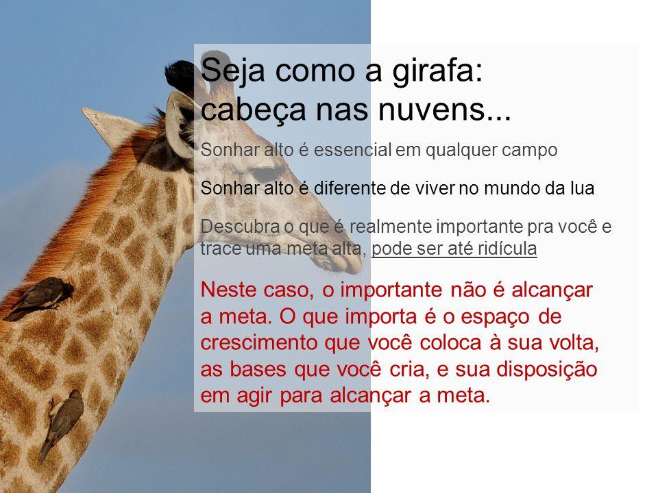 Seja como a girafa: cabeça nas nuvens...