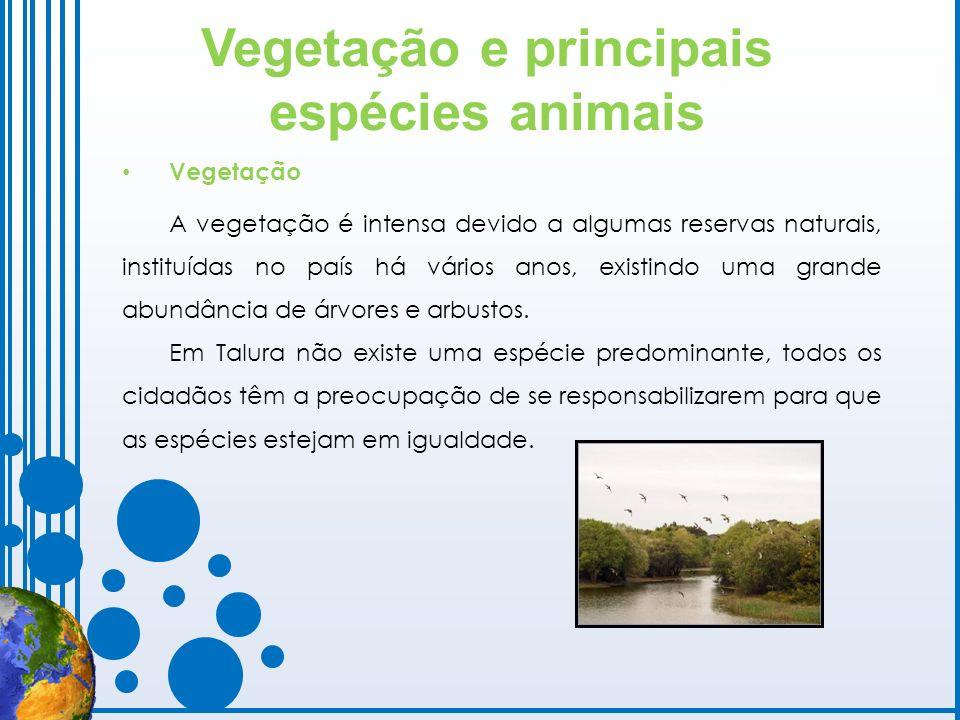 Vegetação e principais espécies animais