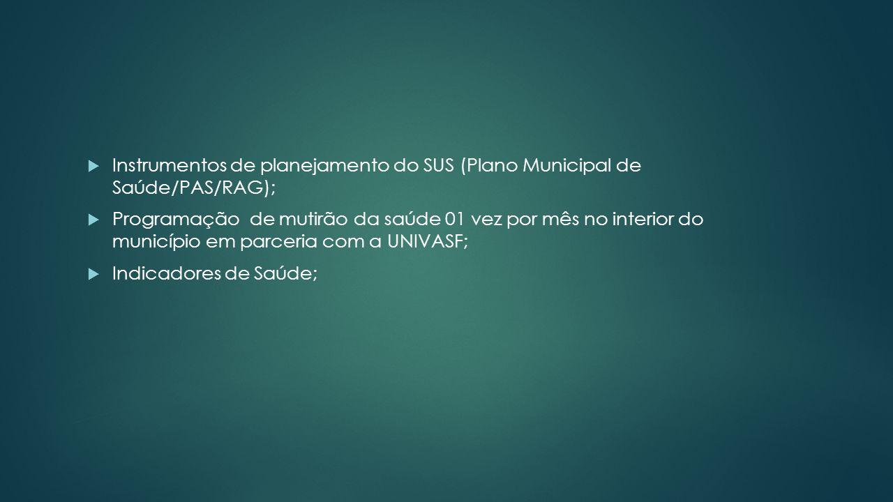 Instrumentos de planejamento do SUS (Plano Municipal de Saúde/PAS/RAG);