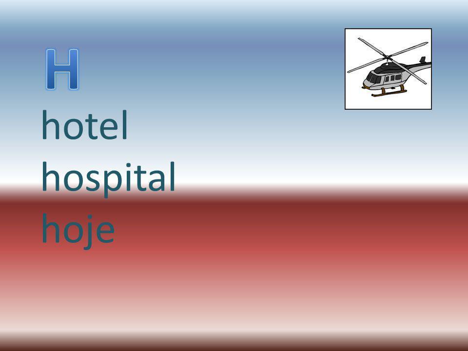 H hotel hospital hoje
