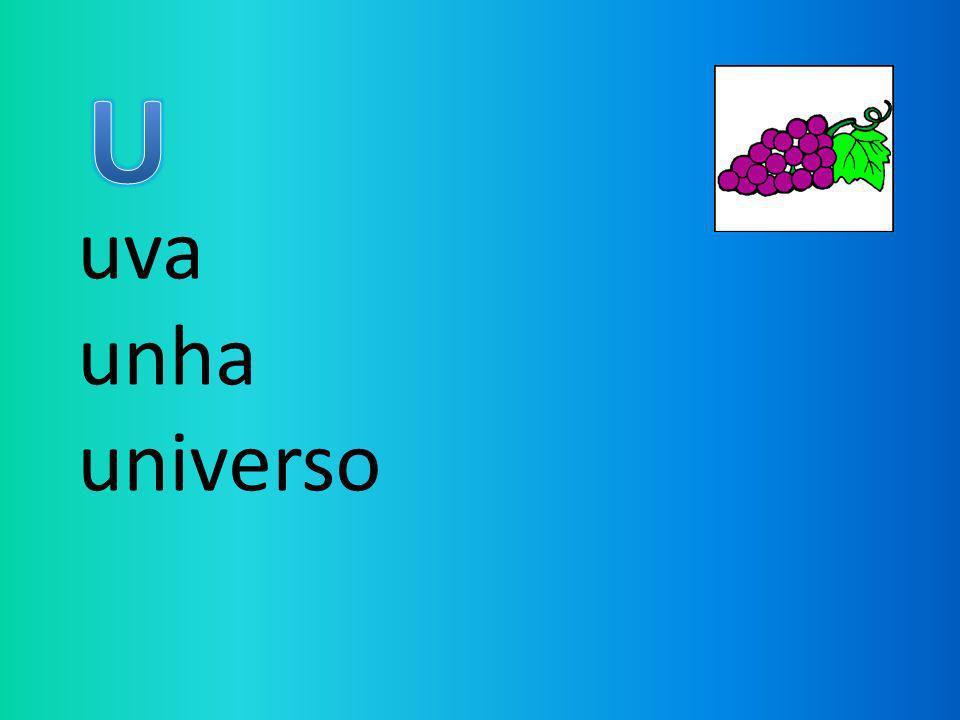 U uva unha universo