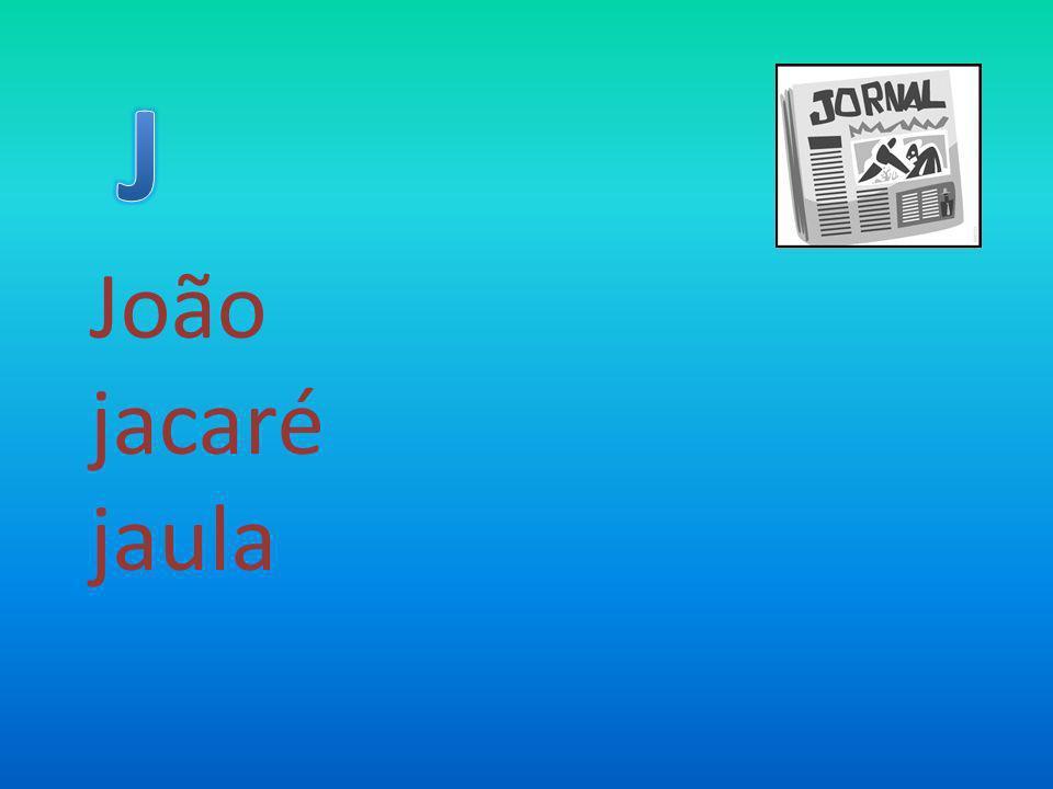 J João jacaré jaula