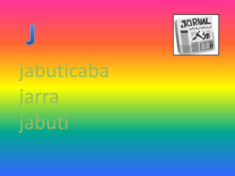 jabuticaba jarra jabuti