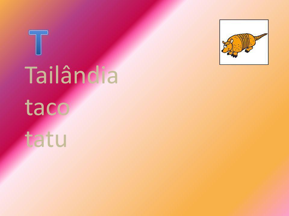 T Tailândia taco tatu