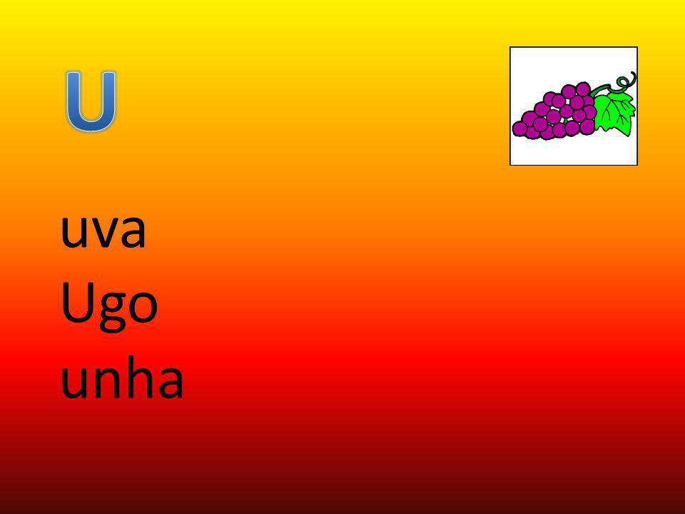 U uva Ugo unha