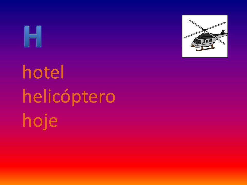 hotel helicóptero hoje