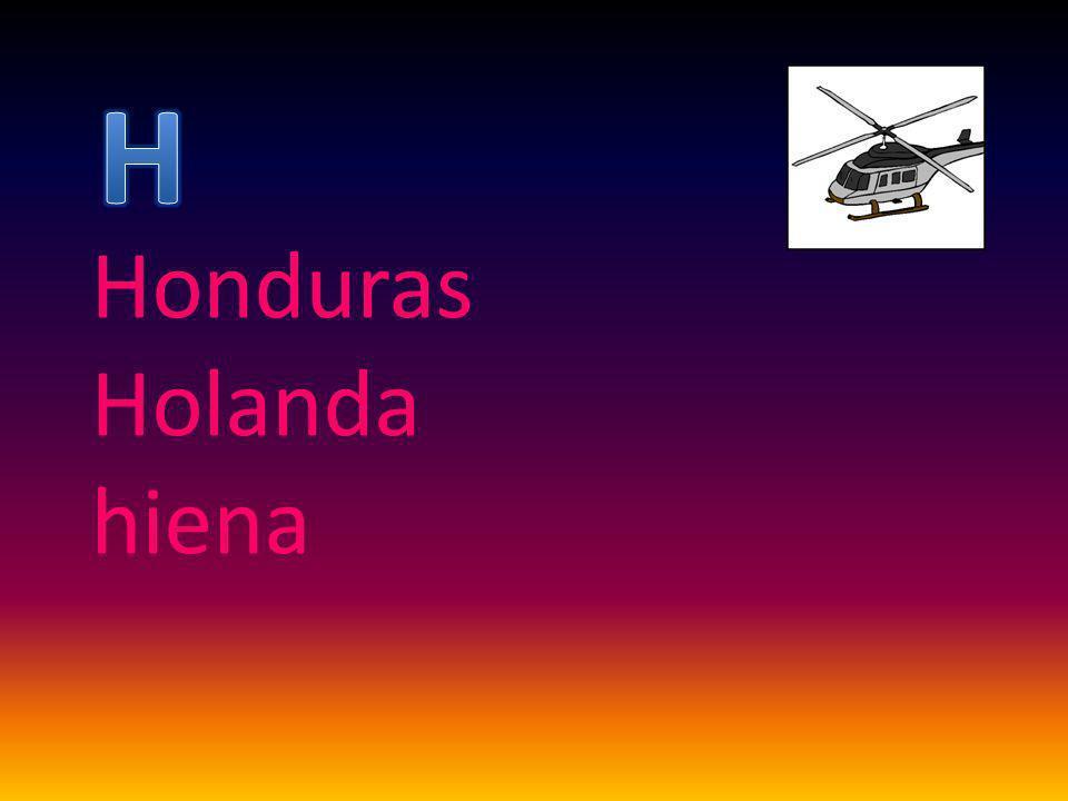 Honduras Holanda hiena
