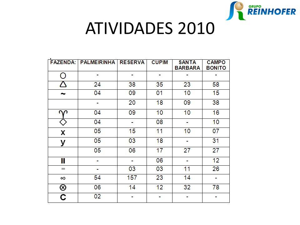 ATIVIDADES 2010