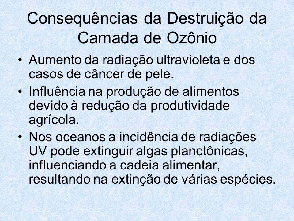 Consequências da Destruição da Camada de Ozônio