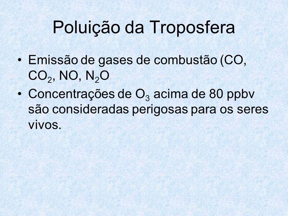 Poluição da Troposfera