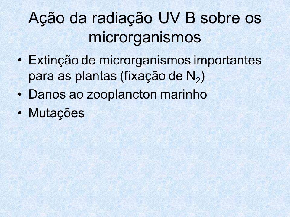 Ação da radiação UV B sobre os microrganismos
