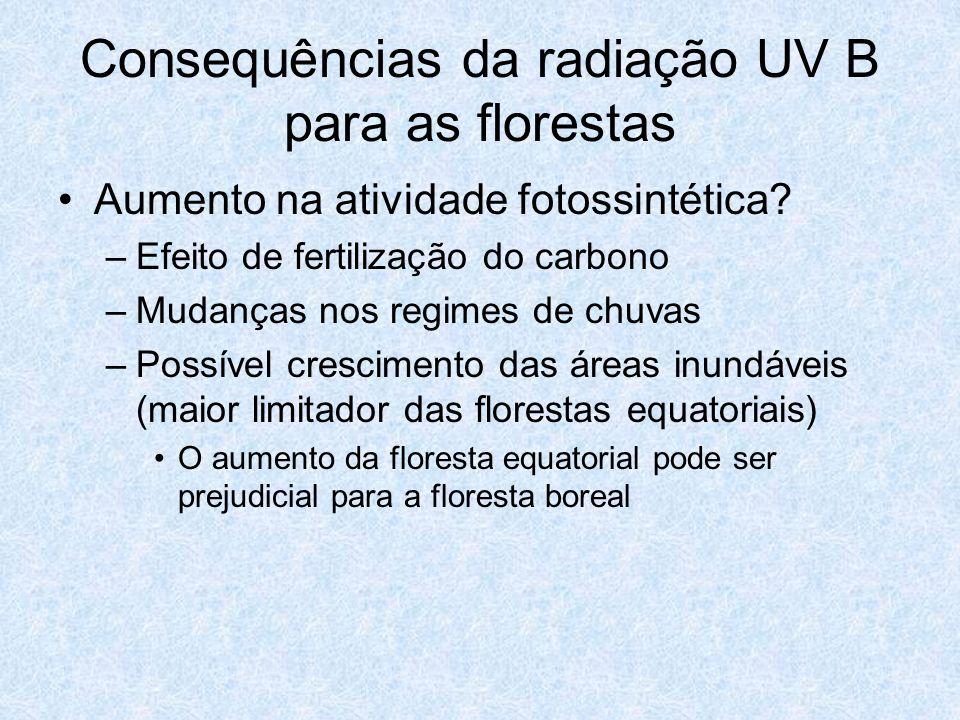 Consequências da radiação UV B para as florestas