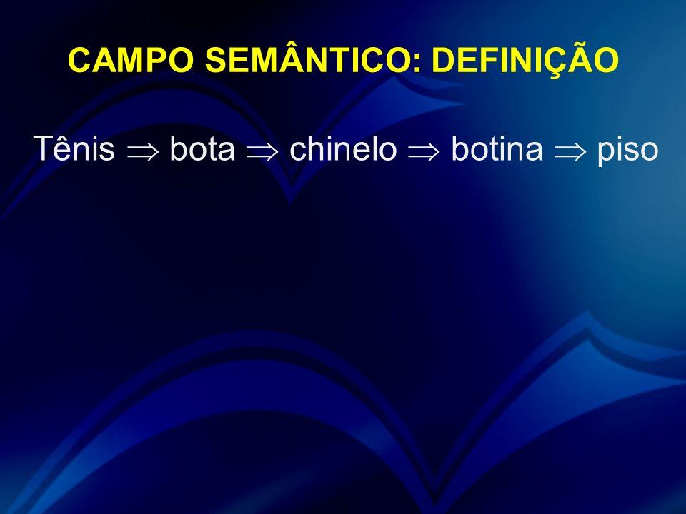 CAMPO SEMÂNTICO: DEFINIÇÃO