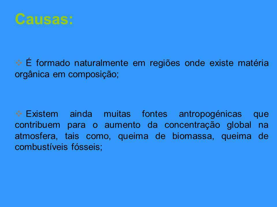 Causas: É formado naturalmente em regiões onde existe matéria orgânica em composição;
