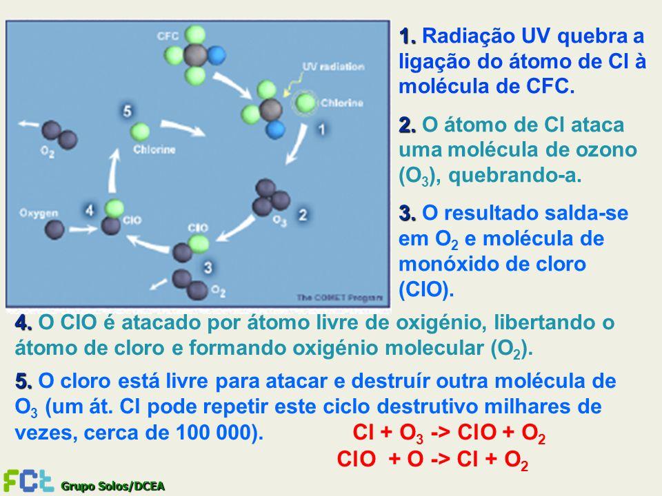 1. Radiação UV quebra a ligação do átomo de Cl à molécula de CFC.