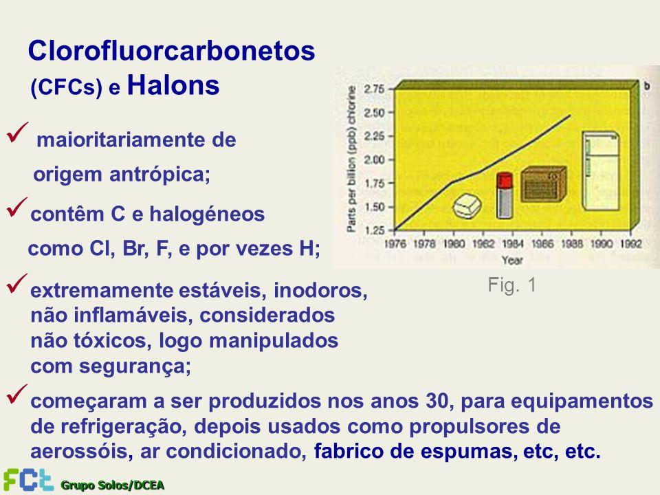 Clorofluorcarbonetos (CFCs) e Halons