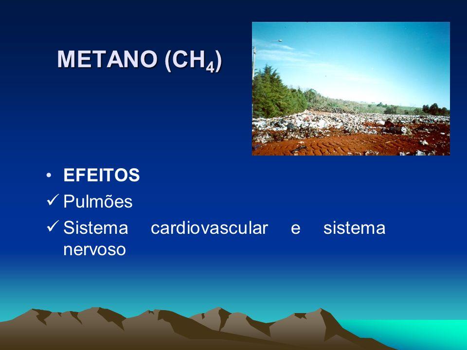 METANO (CH4) EFEITOS Pulmões Sistema cardiovascular e sistema nervoso