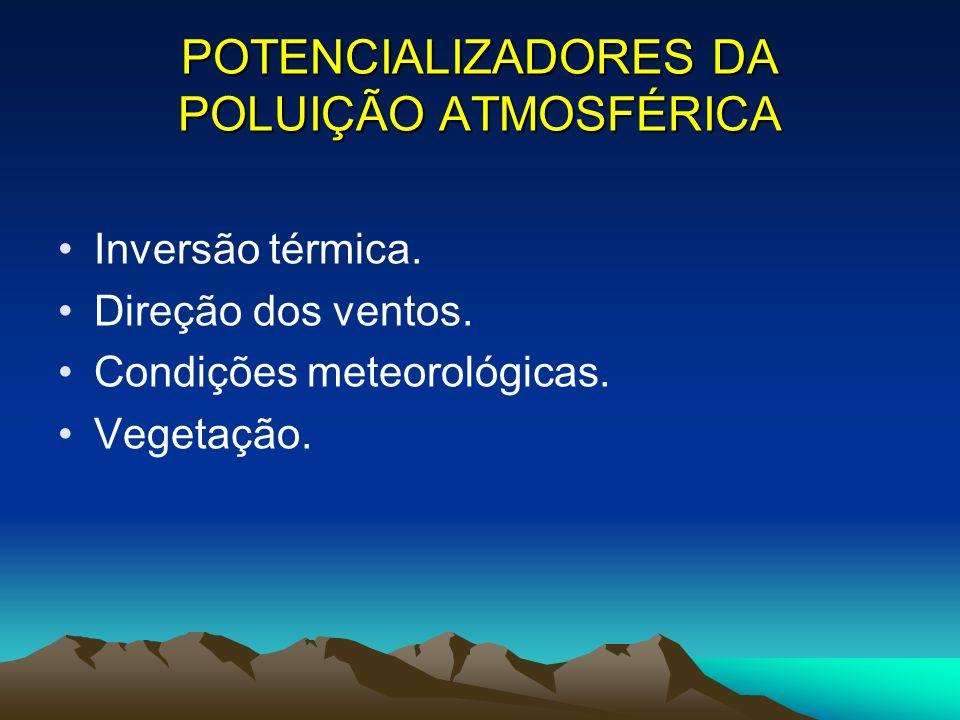 POTENCIALIZADORES DA POLUIÇÃO ATMOSFÉRICA