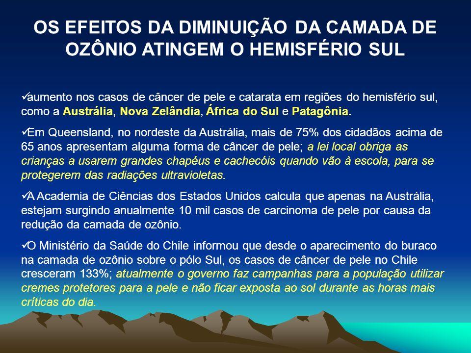 OS EFEITOS DA DIMINUIÇÃO DA CAMADA DE OZÔNIO ATINGEM O HEMISFÉRIO SUL