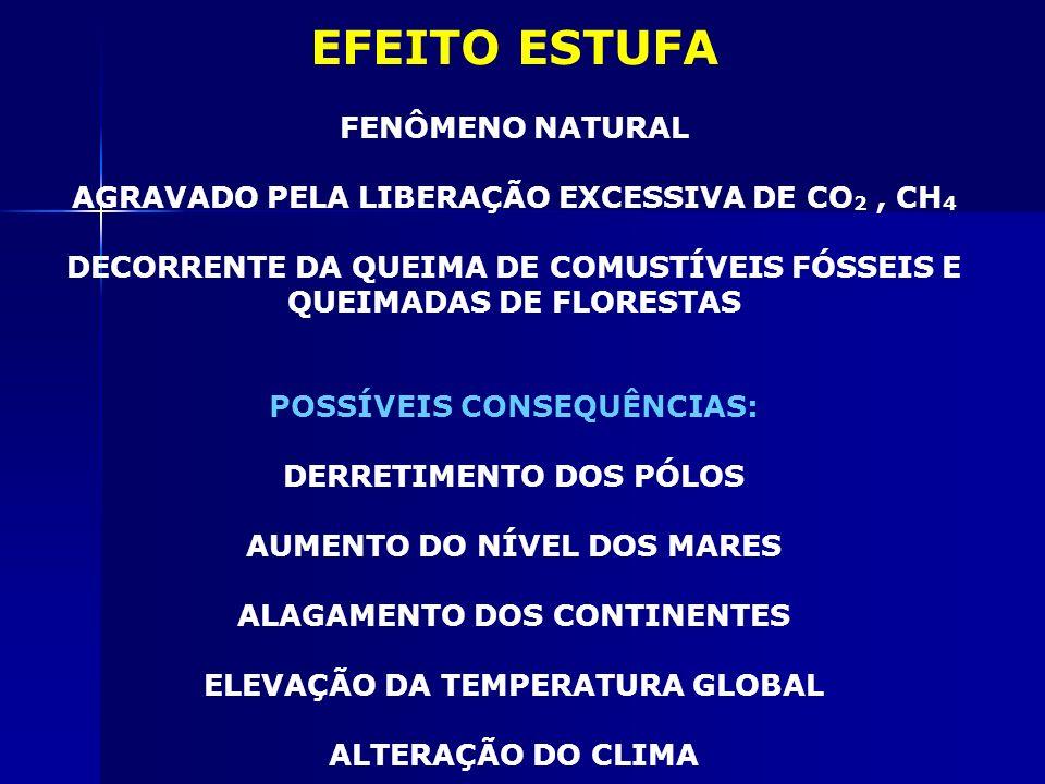 EFEITO ESTUFA FENÔMENO NATURAL