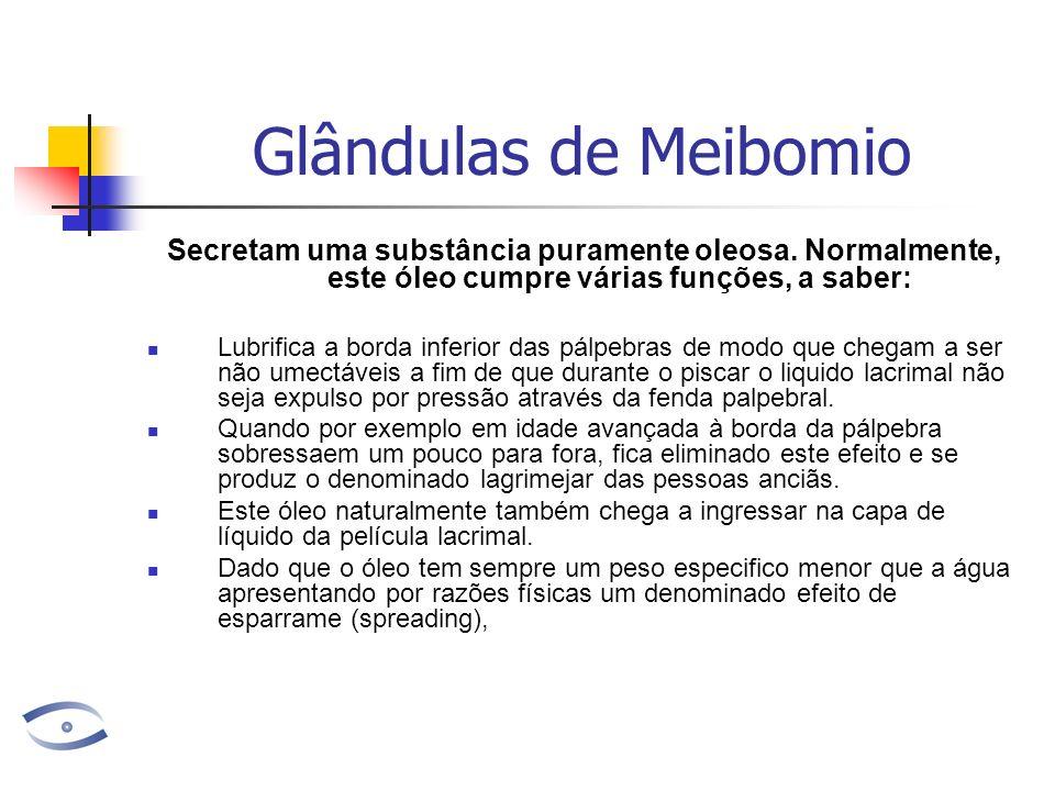 Glândulas de Meibomio Secretam uma substância puramente oleosa. Normalmente, este óleo cumpre várias funções, a saber: