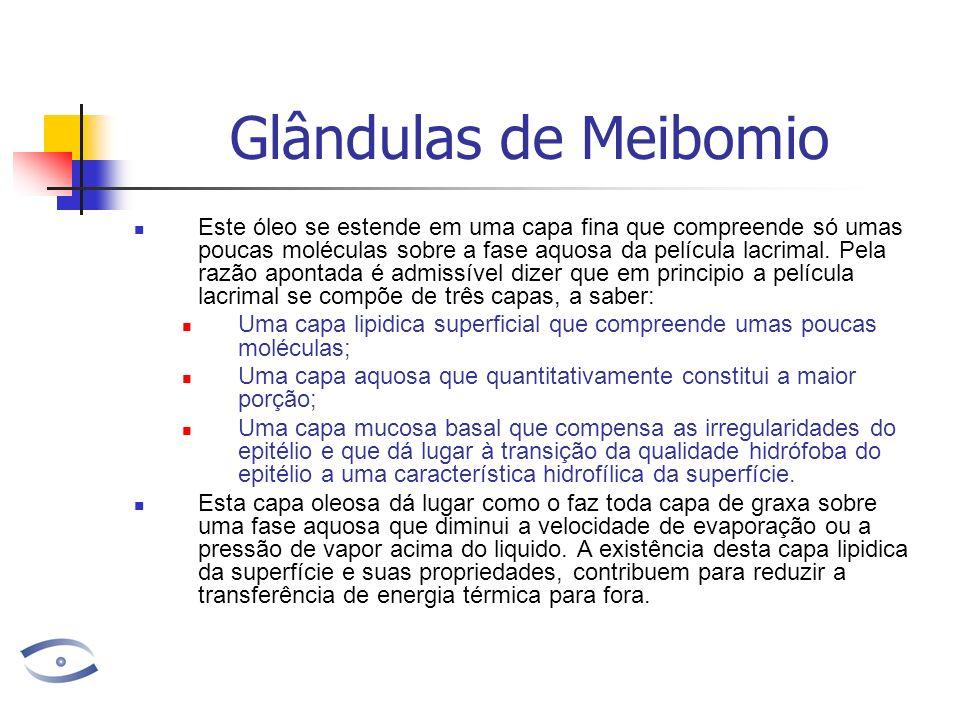 Glândulas de Meibomio