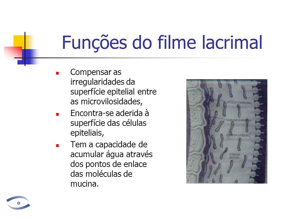 Funções do filme lacrimal