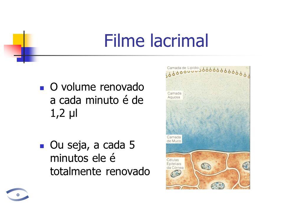 Filme lacrimal O volume renovado a cada minuto é de 1,2 µl
