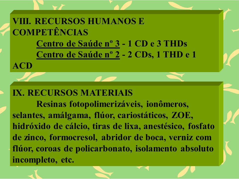 VIII. RECURSOS HUMANOS E COMPETÊNCIAS