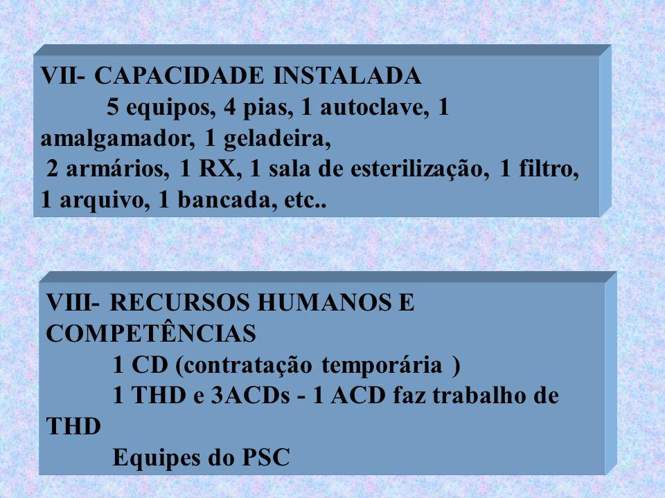 VII- CAPACIDADE INSTALADA