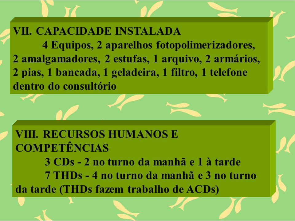VII. CAPACIDADE INSTALADA