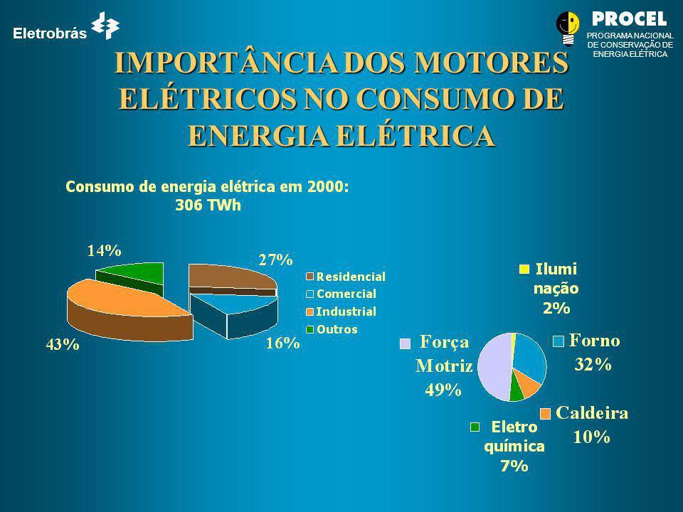 IMPORTÂNCIA DOS MOTORES ELÉTRICOS NO CONSUMO DE ENERGIA ELÉTRICA