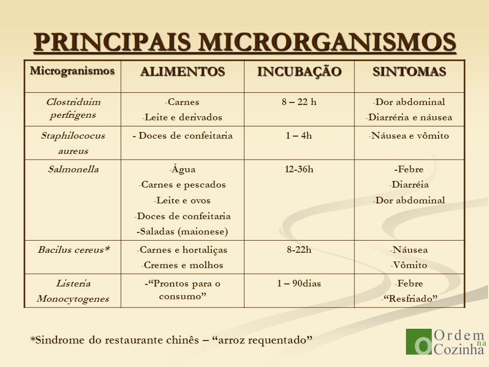 PRINCIPAIS MICRORGANISMOS