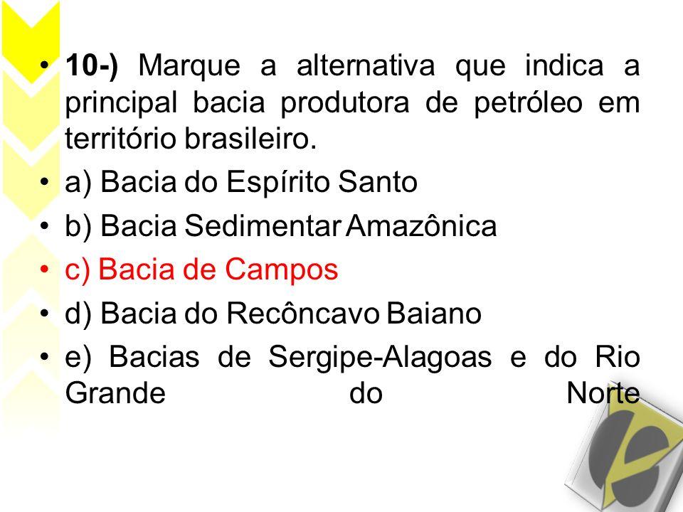 10-) Marque a alternativa que indica a principal bacia produtora de petróleo em território brasileiro.