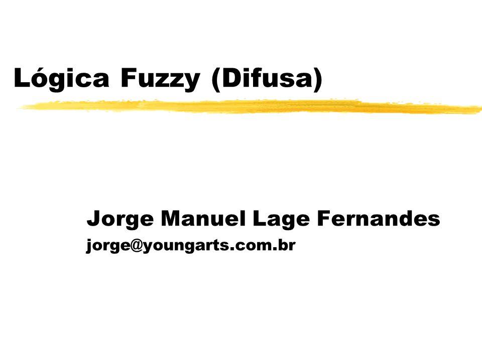 Jorge Manuel Lage Fernandes jorge@youngarts.com.br