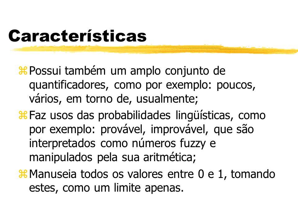 Características Possui também um amplo conjunto de quantificadores, como por exemplo: poucos, vários, em torno de, usualmente;