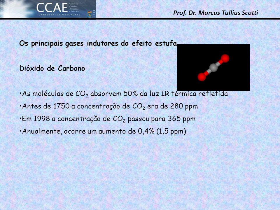 Os principais gases indutores do efeito estufa