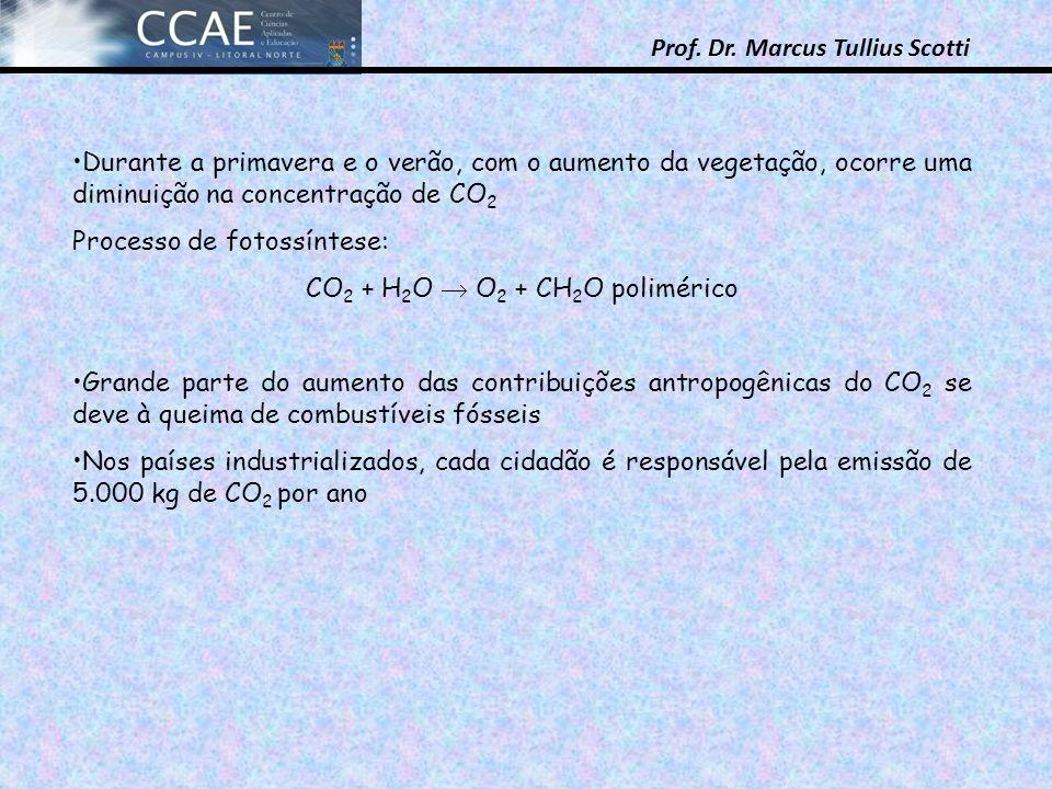CO2 + H2O  O2 + CH2O polimérico