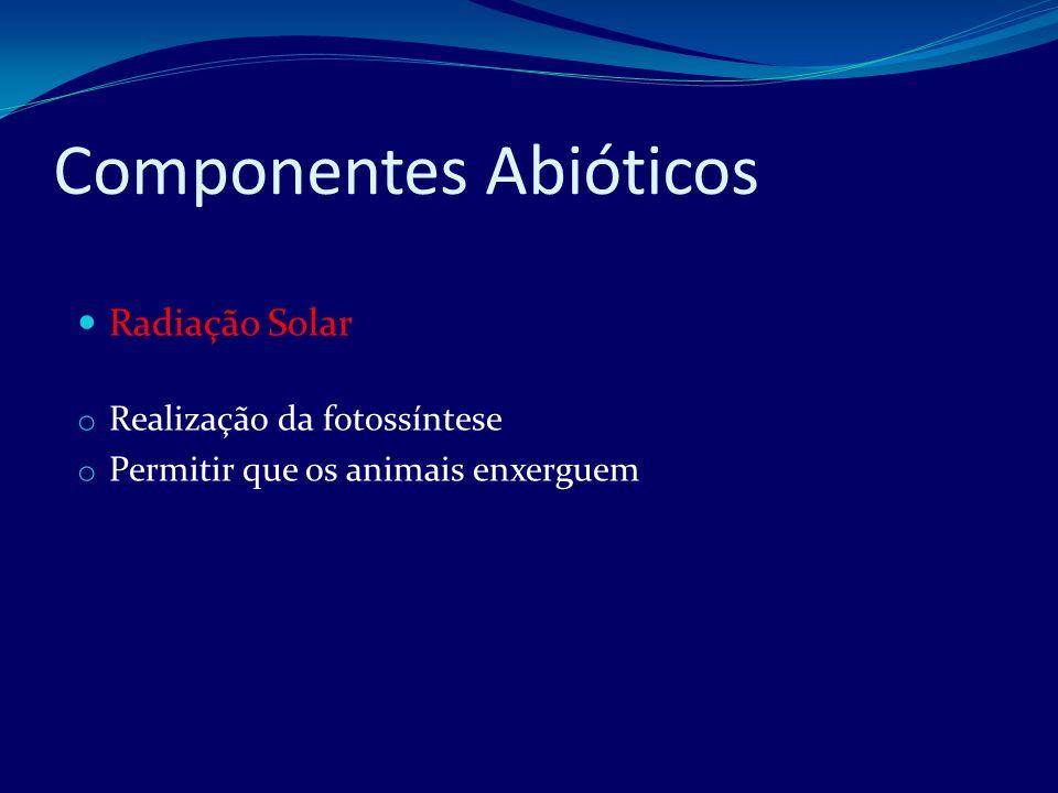 Componentes Abióticos