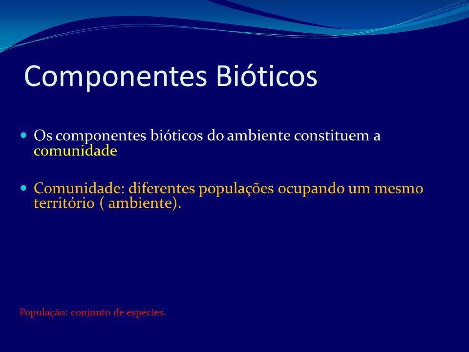 Componentes Bióticos Os componentes bióticos do ambiente constituem a comunidade.