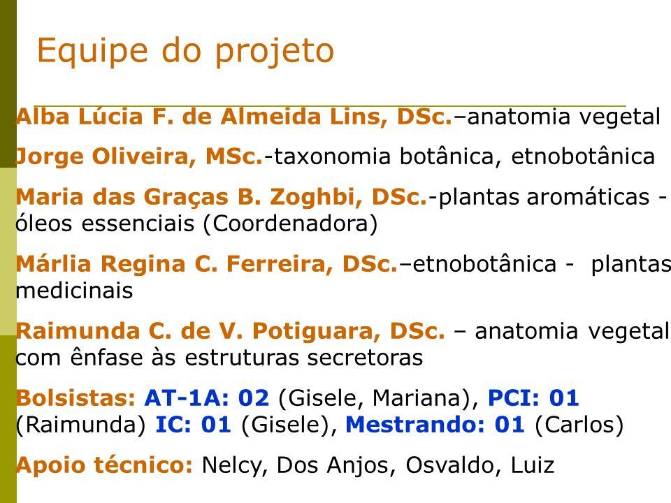 Equipe do projeto Alba Lúcia F. de Almeida Lins, DSc.–anatomia vegetal