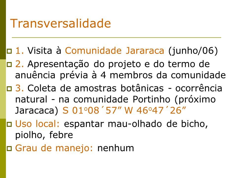 Transversalidade 1. Visita à Comunidade Jararaca (junho/06)