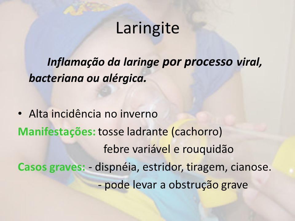 Laringite Inflamação da laringe por processo viral, bacteriana ou alérgica. Alta incidência no inverno.