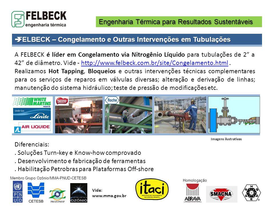 FELBECK – Congelamento e Outras Intervenções em Tubulações