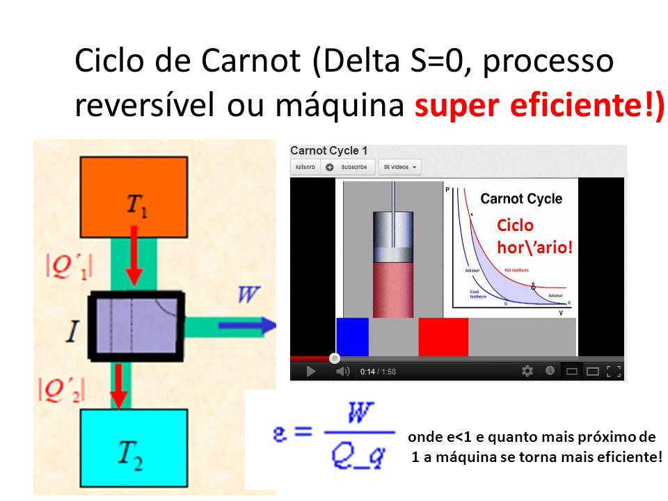 Ciclo de Carnot (Delta S=0, processo