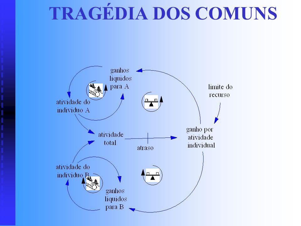 TRAGÉDIA DOS COMUNS